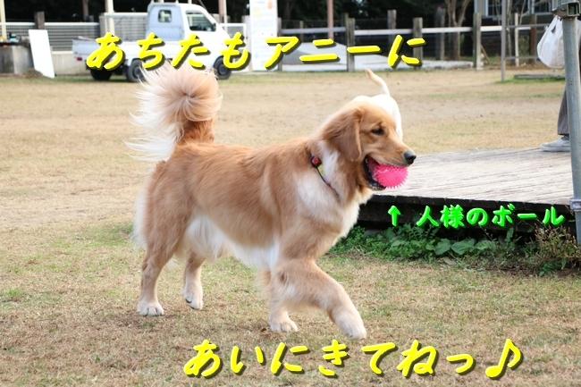 IMG_1578.jpg