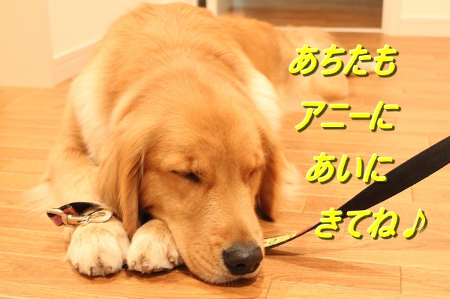 IMG_21621217.jpg
