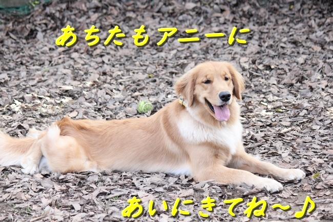 IMG_22791210.jpg