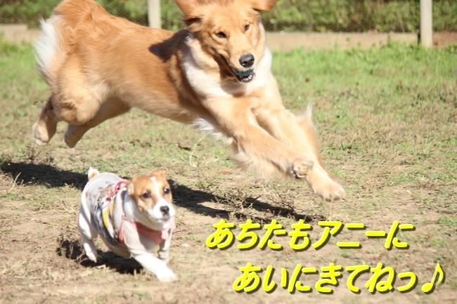 IMG_23451213.jpg