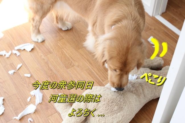 IMG_2351.jpg