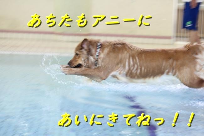 IMG_2486101.jpg