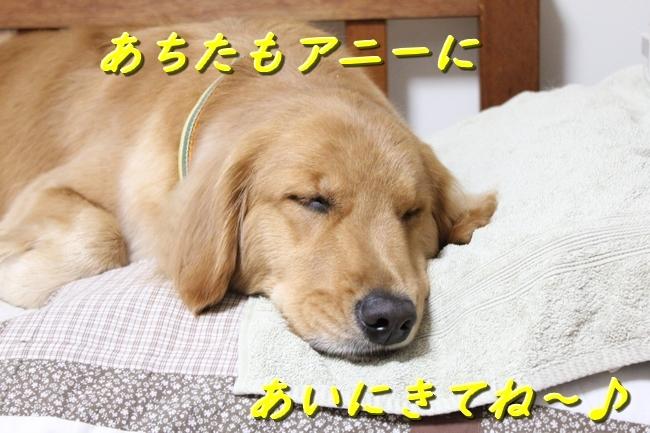 IMG_32261226.jpg