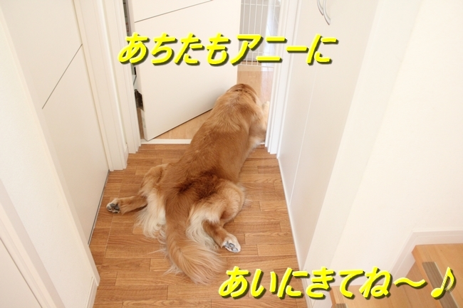 IMG_3330.jpg