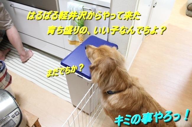 IMG_37108.jpg
