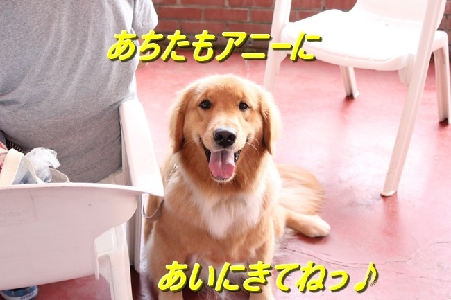 IMG_38821.jpg