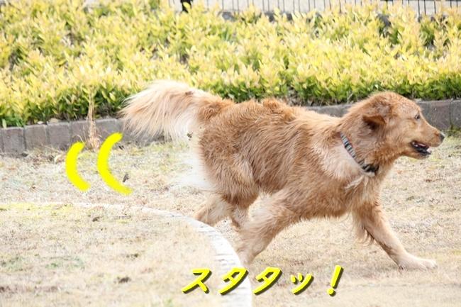 IMG_38950205.jpg