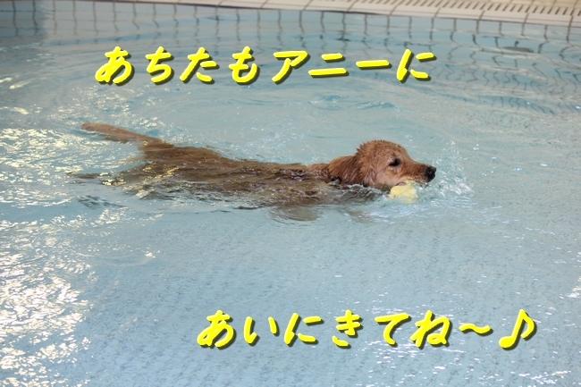 IMG_40520116.jpg