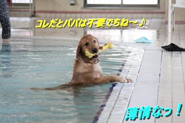 IMG_41000108.jpg