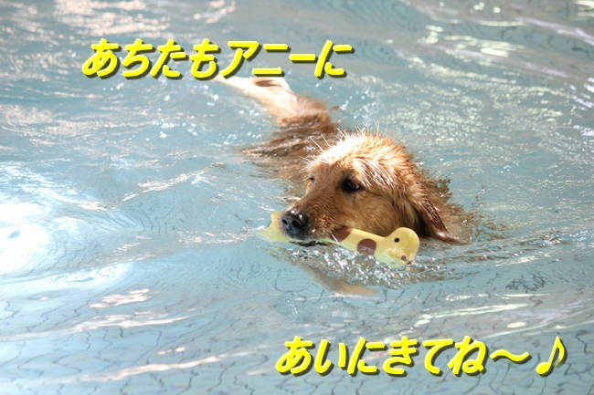 IMG_41210120.jpg
