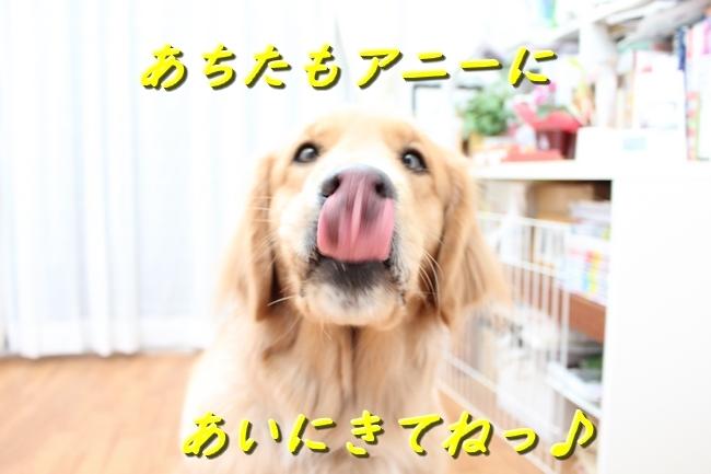IMG_41910110.jpg