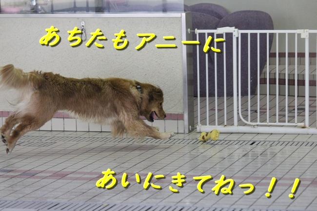 IMG_42420123.jpg