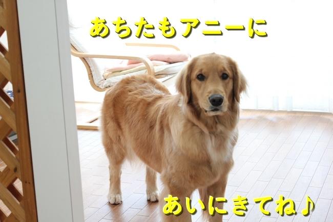 IMG_43210116.jpg