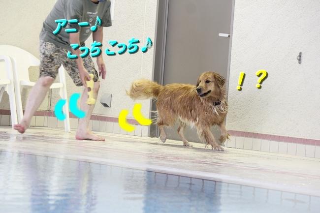 IMG_4347.jpg