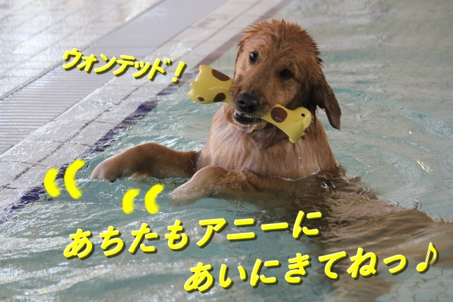 IMG_44500124.jpg