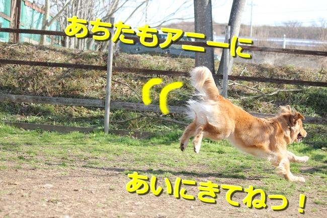 IMG_45360128.jpg