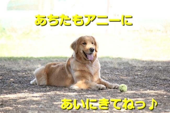 IMG_45440127.jpg