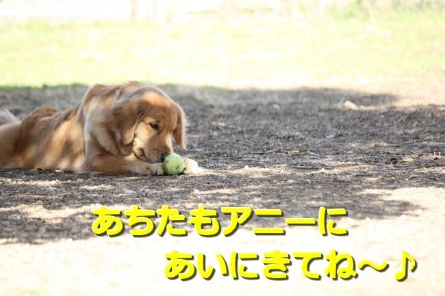 IMG_45450214.jpg