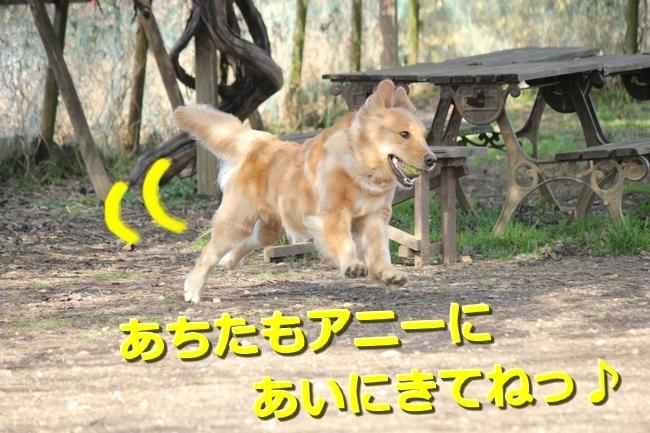 IMG_45850129.jpg
