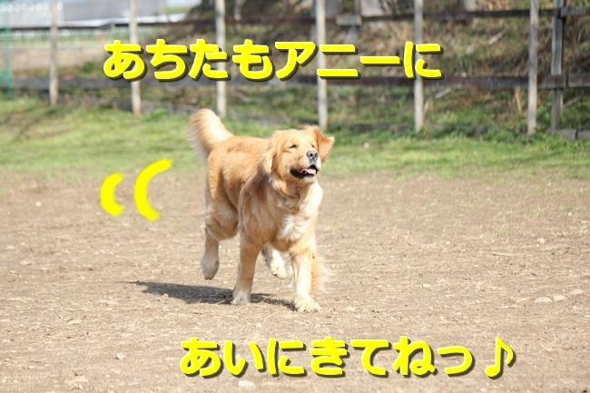 IMG_459601311.jpg