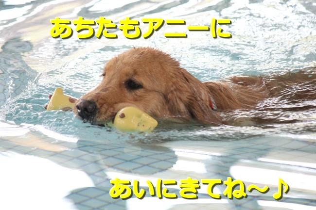 IMG_46750203.jpg