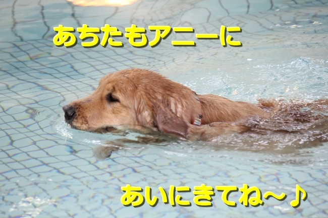 IMG_47020211.jpg