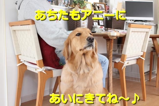 IMG_48770215.jpg