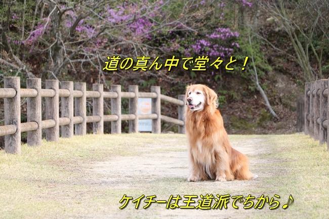 IMG_55989.jpg