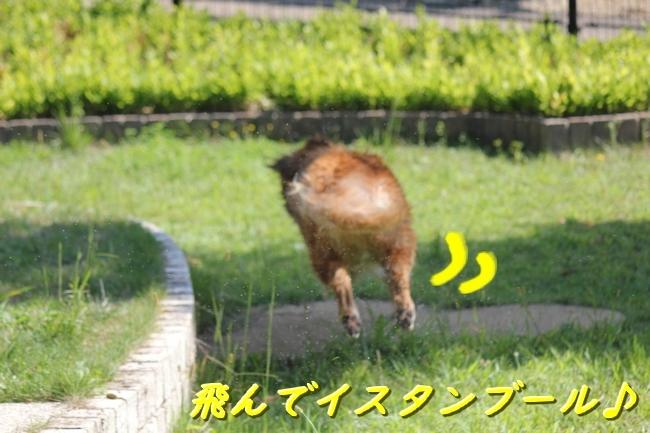 IMG_5766.jpg