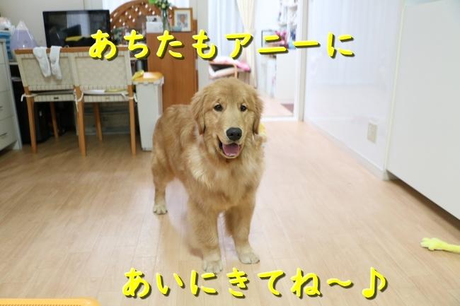 IMG_68120121.jpg