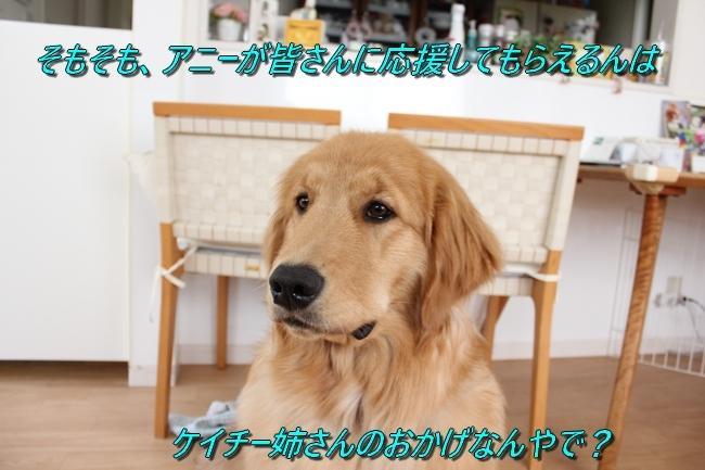 IMG_9332.jpg