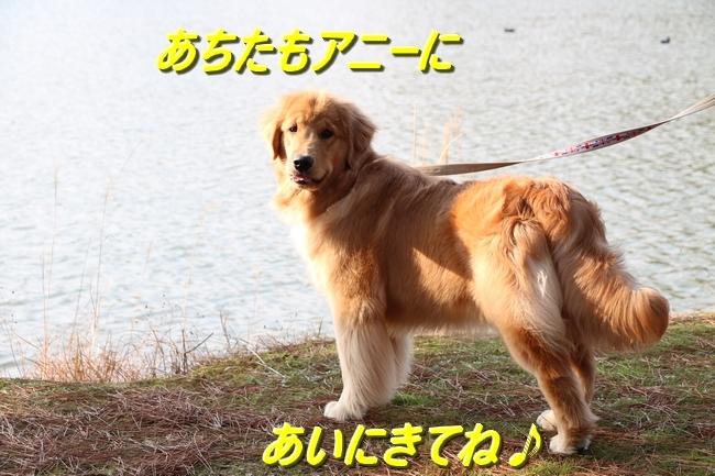 IMG_9435.jpg