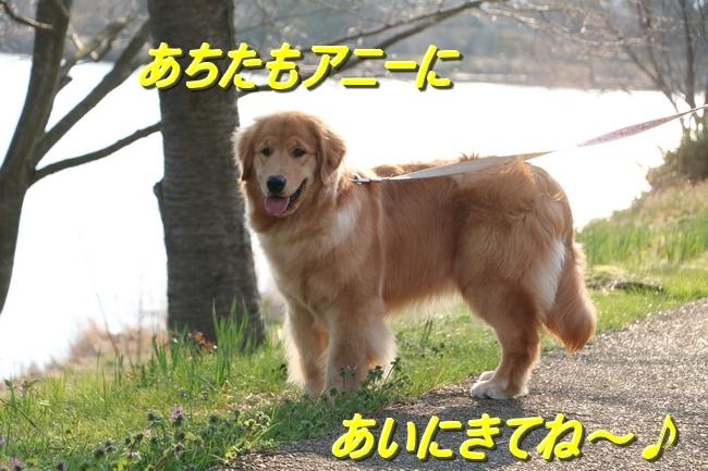 IMG_95020.jpg