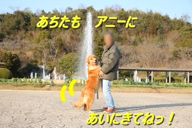 IMG_9569.jpg