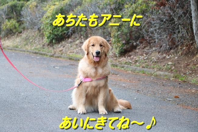 IMG_96850.jpg