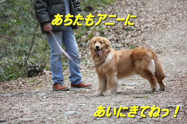 IMG_9747.jpg
