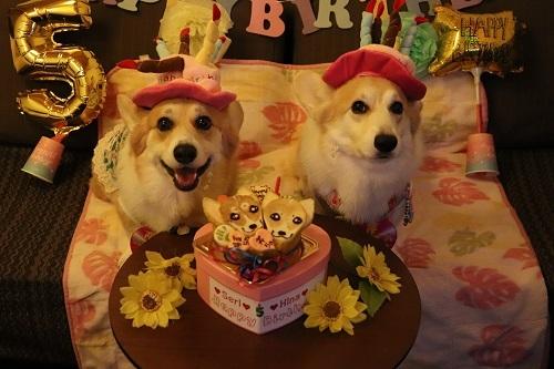 13ケーキと