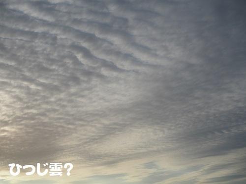 16ひつじ雲