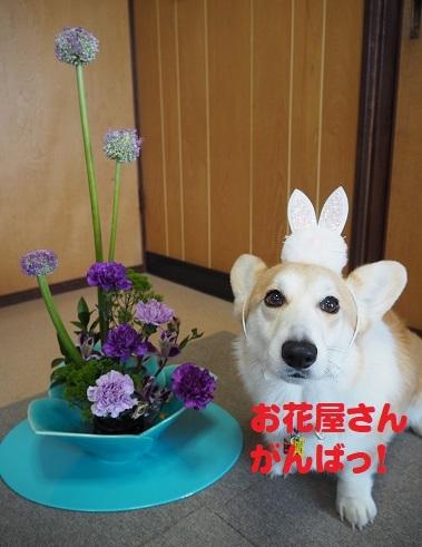 1お花屋さn
