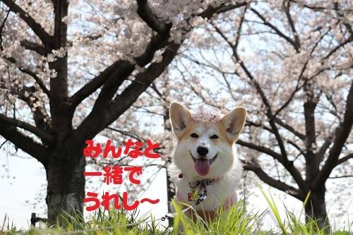 10うれしー