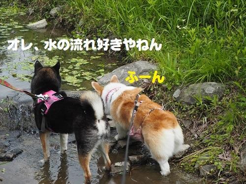8水の流れ