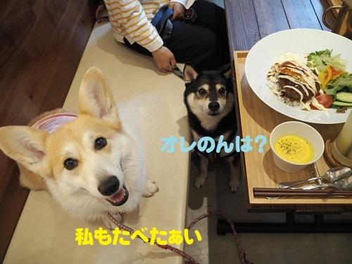 2たべたい