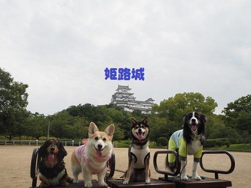 35姫路城