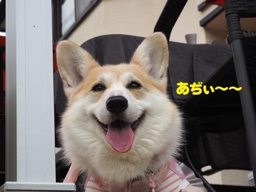 12あぢぃ