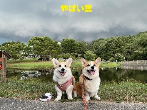 30やばい雲