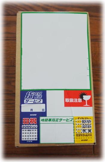 x8968.jpg