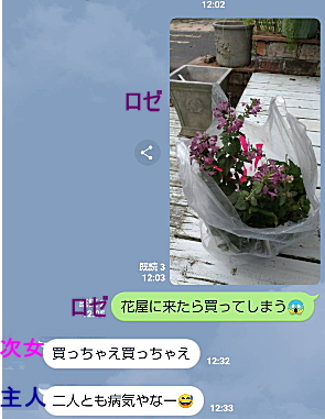 x9417.jpg