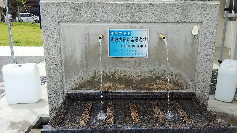 道の駅尾瀬かたしな花の谷湧水202006