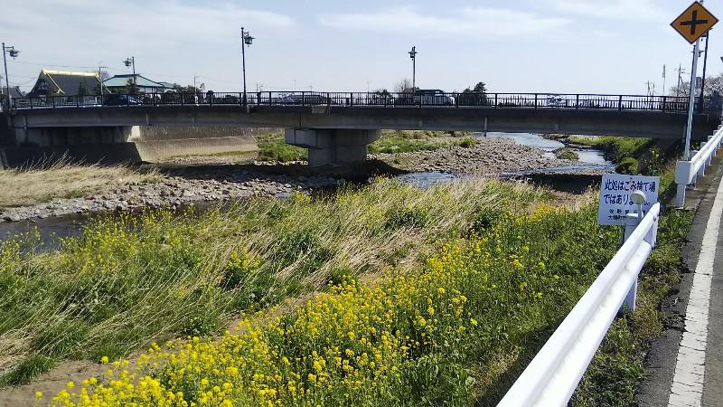 秋山川水位202003