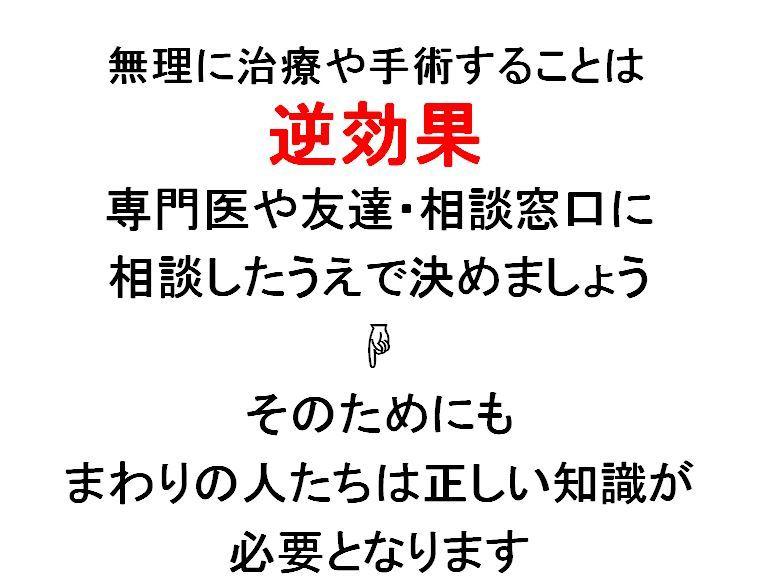 リーフレット 8